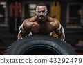 健美运动者 健身房 男性 43292479