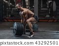 健美运动者 健身房 举起 43292501
