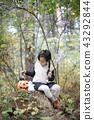 萬聖節,秋天,南瓜,糖果籃,巫婆帽子,魔術長袍,娃娃 43292844