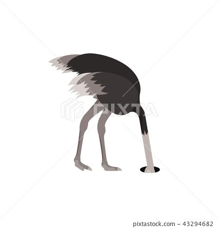 Cartoon Ostrich Bird Feeling Fear Flat Design. Vector 43294682