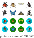 Wrecker, parasite, nature, butterfly .Insects set collection icons in cartoon,flat style vector 43299067