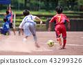 소년 축구 43299326