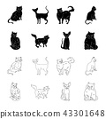 Sphinx, nibelung,norwegian forest cat and other species. Cat breeds set collection icons in black 43301648