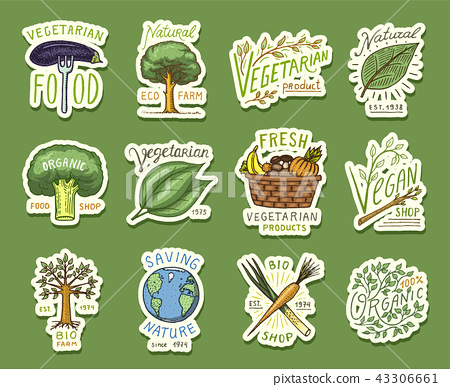 Healthy Organic Food Logos Set Or Labels And Stock Illustration 43306661 Pixta