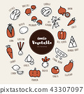 Vector set of vegetable icons. Doodle. 43307097