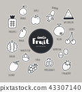 Vector set of fruit icons. Doodle. 43307140
