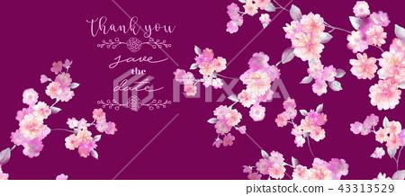 優雅的水彩玫瑰花花卉集合 43313529