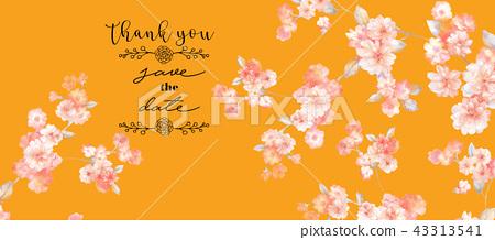 優雅的水彩玫瑰花花卉集合 43313541