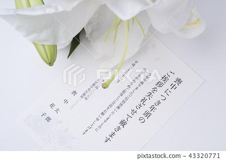 Mourning postcard 43320771