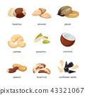 Cartoon nuts vector set 43321067