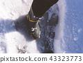 겨울 눈 43323773