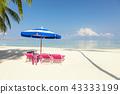sea, ocean, beach 43333199