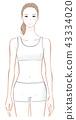 Female upper body 43334020