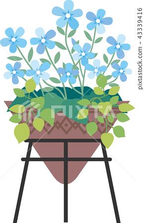 盆栽的花 43339416