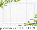 신록 잎 흰색 프레임 43341193
