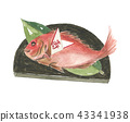 เฉลิมฉลองปลากะพง 43341938