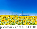 能源和環境形象 43343101