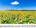 풍차, 풍력 발전, 풍경 43345568