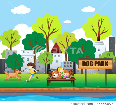 people and pets at dog park 43345857