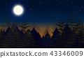 夜晚 森林 树林 43346009