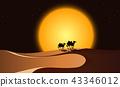 Desert scene at night 43346012