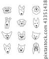 สุนัขพันธุ์ขาวดำแนวตั้ง 43351438