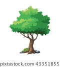 illustration tree for cartoon 43351855