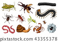 Big set of insects. Vintage Pets in house. Bugs Beetles Scorpion Snail, Whip Spider, Worm Centipede 43355378