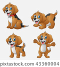 Cartoon funny dogs collection set 43360004