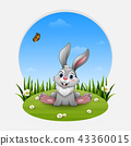 Cartoon funny rabbit sitting on the grass 43360015
