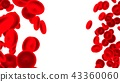 Group of red blood cells 43360060