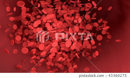 Red blood cell in blood vessel of body 43360275