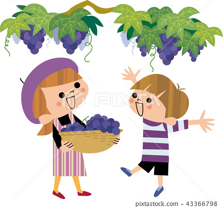 Grape hunting mother and child 43366798