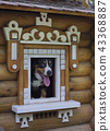 Dog in small wooden house. 43368887