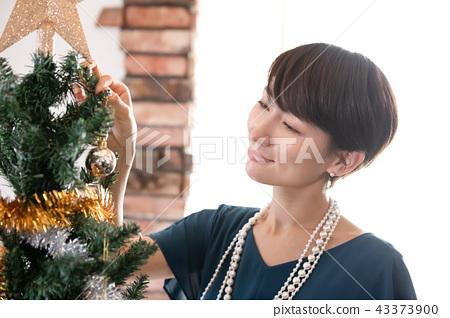 크리스마스 파티 43373900