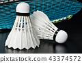 Shuttlecock and badminton racket. 43374572