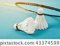 shuttlecock and badminton racket. 43374599
