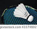 shuttlecock and badminton racket . 43374602