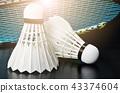 Shuttlecock and badminton racket. 43374604