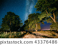 Milky Way Galaxy In Night Starry Sky Above Tree In Summer Forest 43376486