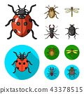 Insect, bug, beetle, paw .Insects set collection icons in cartoon,flat style vector symbol stock 43378515