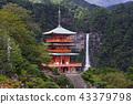 [世界遺產 - 和歌山縣] Nachi的瀑布和三重塔(Nachi的Otaki和Triple Treasure Tower) 43379798