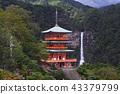[世界遺產 - 和歌山縣] Nachi的瀑布和三重塔(Nachi的Otaki和Triple Treasure Tower) 43379799
