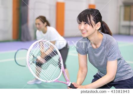 체육관 테니스 43381943