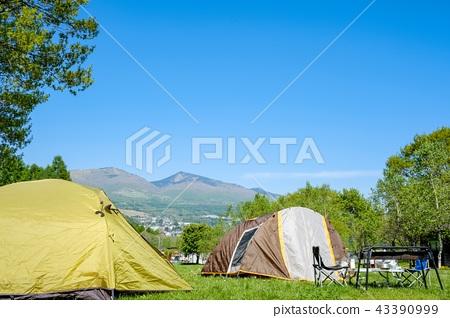 고원의 캠프장 43390999