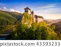 castle, landscape, hill 43393233