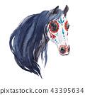 Watercolor horse portrait 43395634