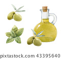 Watercolor olive set 43395640