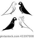 set of parrot 43397008