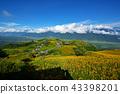 crest, mountain, peak 43398201